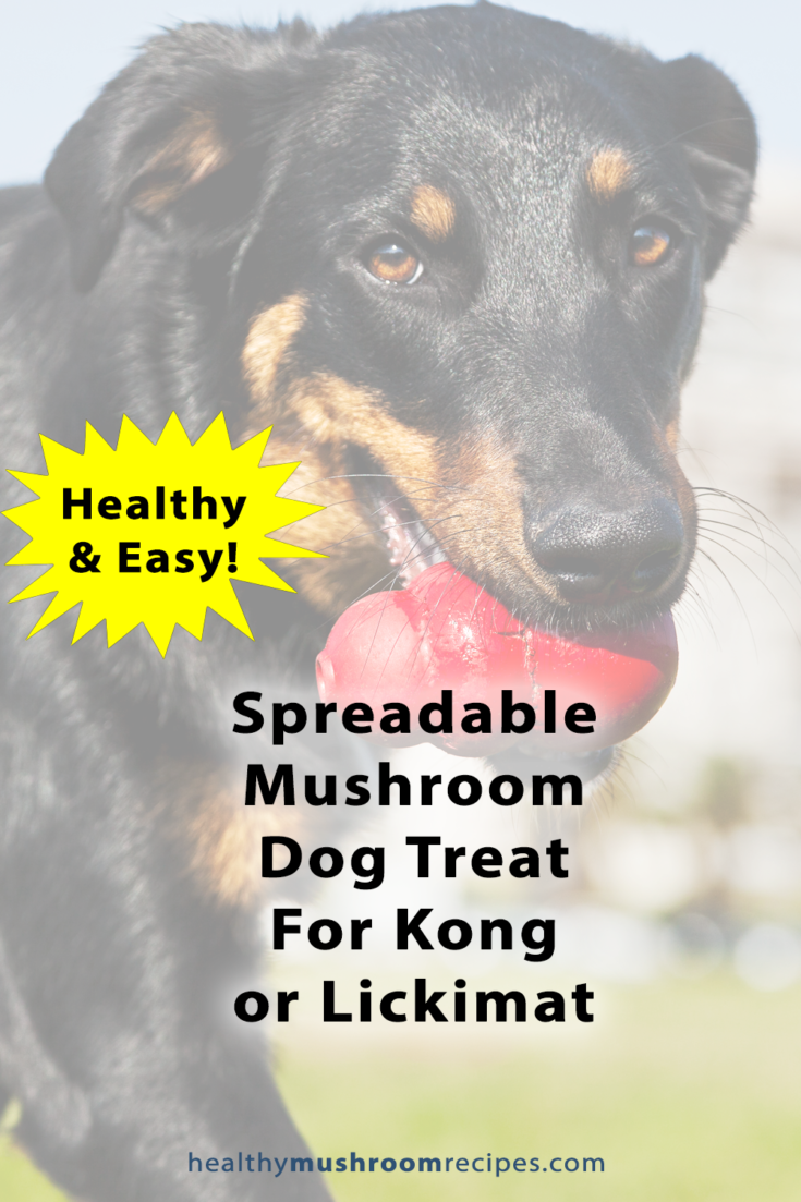 Mushroom Spreadable Treat/Kong Stuffing Recipe For Dogs